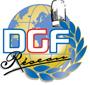 logo  dgf reseau